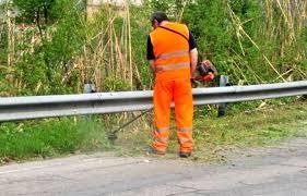 Ufficio Verde Pubblico Comune Di Bologna : Programma manutenzione aprile 2017: verde pubblico u2013 cesenatico servizi